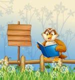 An owl reading a book beside a wooden signboard Stock Photos