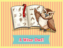 Owl reading science book Royalty Free Stock Photo
