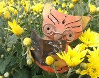 Owl reading in yellow Chrysanthemum flower plantation royalty free stock photo
