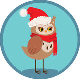 Owl in red scarf and hat on the blue background Stock Photo