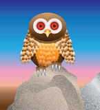 Owl on rock Royalty Free Stock Images