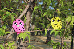 The Owl`s family. Origami Owl in the park stock photography