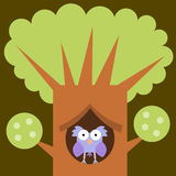 Owl's home Royalty Free Stock Image