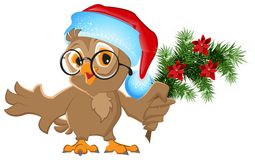 Owl in a Santa Claus hat holding a fir branch Stock Photos