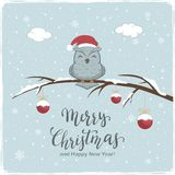 Owl with Red Balls and Lettering Merry Christmas on Winter Background