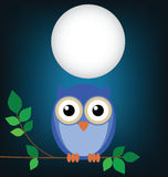 Owl sat on a tree. Wise old owl sat on a tree branch at night Royalty Free Stock Image