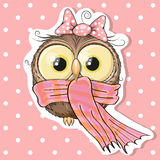 Owl in a scarf. Cute Owl in a scarf on a pink background Royalty Free Stock Photo