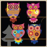 Owl school Stock Images