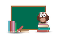 Owl and School Board Royalty Free Stock Photo