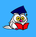 Owl scientist books illustration Stock Photography