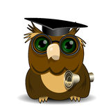 Owl scientist Stock Images