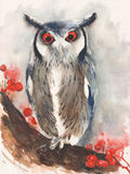 Owl screech watercolor painting isolated on white background Royalty Free Stock Photos