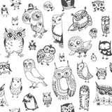 Owl seamless background. Monochrome. Hand drawn vector Royalty Free Stock Photos