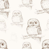 Owl seamless pattern. Hand drawn bird background Royalty Free Stock Photos