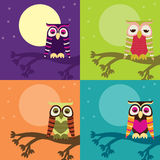 Owl Set Stock Images