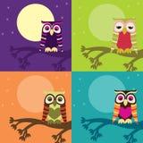 Owl Set Stock Images