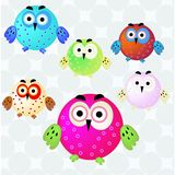 Owl set Royalty Free Stock Images