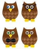 Owl Set. Cute owls symbols of wisdom Stock Photos