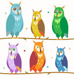 Owl Set coloré mignon sur la branche Vecteur illustration libre de droits