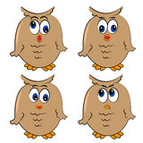 Owl  set. different emotion.isolated birds Stock Photos