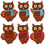 Owl set painting Stock Photography