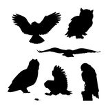 Owl set vector Stock Images