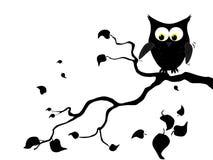 Owl on shake tree. Vector illustration of a cartoon owl on shake tree royalty free illustration