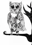 Owl sit on tree branch Stock Images