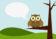 Owl siting on a tree with speech bubble Royalty Free Stock Image