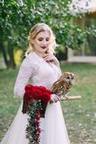 The owl sits on the girl`s hand. The bride with the owl. Artwork Royalty Free Stock Photography