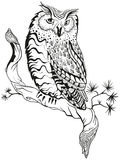 Owl sits on tree branch. Graphic design Stock Photo