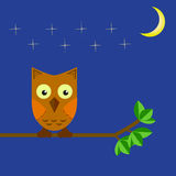 The owl sits on a tree branch in the night sky Royalty Free Stock Photos