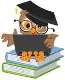 Owl sitting on books and holding a laptop Stock Images