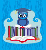 Owl sitting on books Royalty Free Stock Image