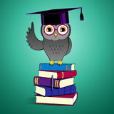 Owl sitting on books Stock Photography
