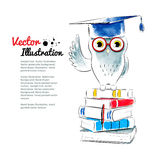 Owl sitting on books Royalty Free Stock Images