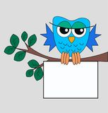 a owl sitting on a branch Stock Images