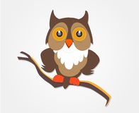 Owl. The owl sitting on a branch vector illustration