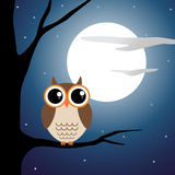 Owl sitting on a branch in moon light Royalty Free Stock Photography