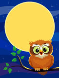 Owl sitting on the branch at Night royalty free illustration