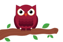 Owl sitting on tree Stock Photo