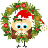 Owl sitting in a Christmas wreath Royalty Free Stock Image