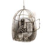 Owl Sitting In noir une cage à oiseaux Image libre de droits