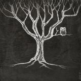 Owl sitting on a tree. Figure owl sitting on a tree on a brown background royalty free illustration