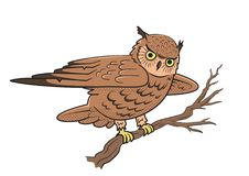 Owl sitting on a tree branch. Symbol of wisdom. Vector illustration isolated on white background. Owl sitting on a tree branch. Symbol of wisdom. Vector Stock Images