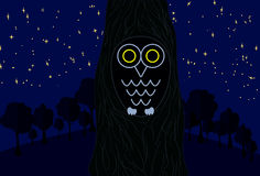 Owl sitting on the tree in the dark night. Stars shining bright. Flat design forest Royalty Free Stock Image