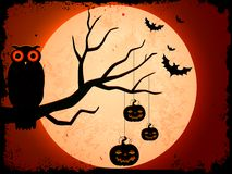 Owl sitting on tree in Halloween Night Royalty Free Stock Photography