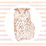 Owl sketch Stock Photo