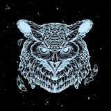 Owl sketch  on a nightsky background Stock Images