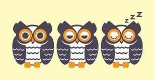 Owl sleep Stock Image